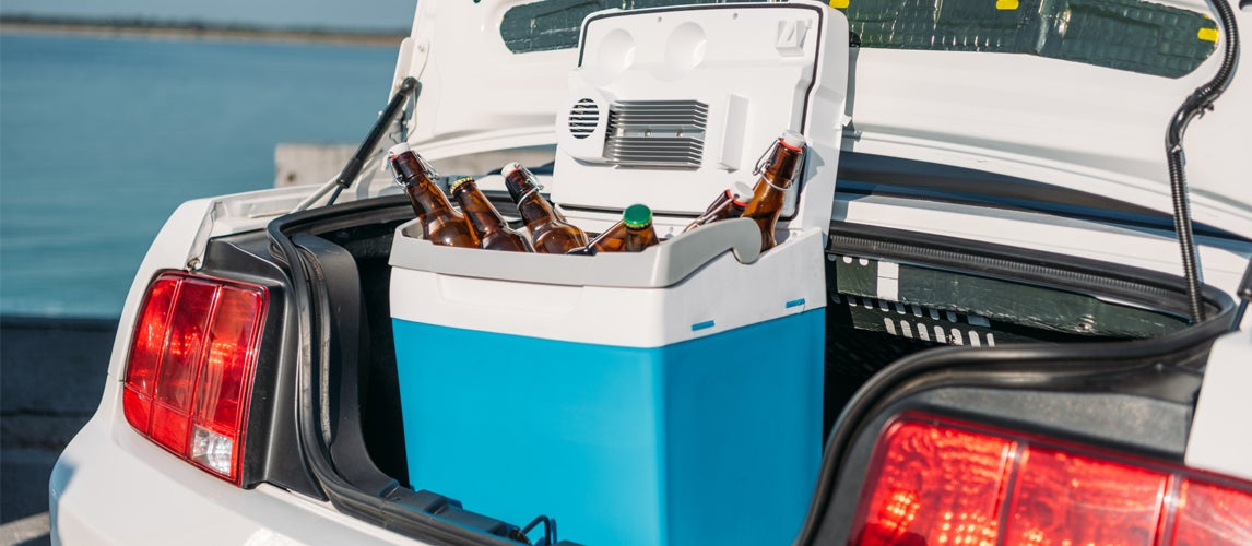 The Best Car Coolers Refrigerators Review Buying Guide