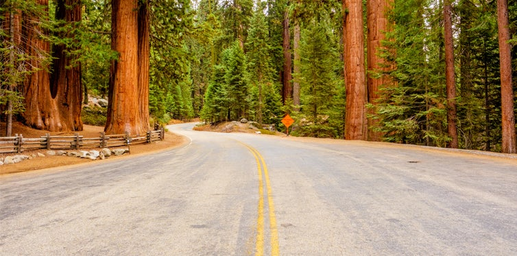 redwood highway route