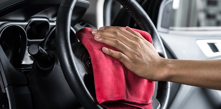 How To Kill Mold On Your Car Interior Car Bibles
