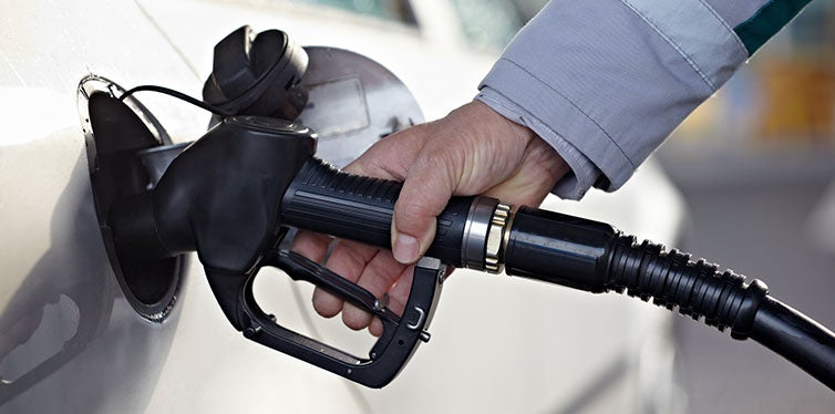 Cropped View Man Holding Fuel Pump
