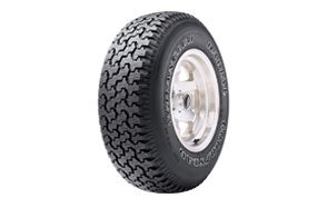 Goodyear Wrangler Radial Mud Tire
