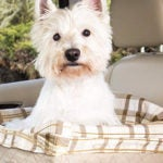 Solvit Jumbo Deluxe Pet Safety Seat