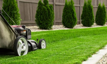 The Best Lawn Mower Covers (Review) in 2021