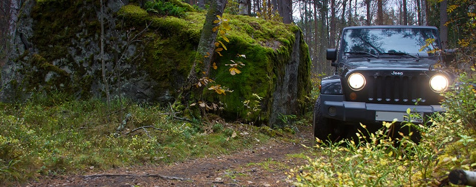 Jeep Wrangler in the autumn forest