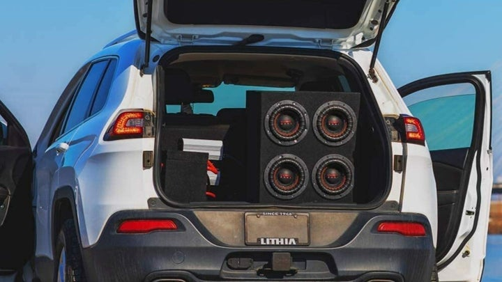 12-inch Subwoofers Close Up