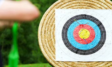 The Best Archery Targets (Review) in 2021