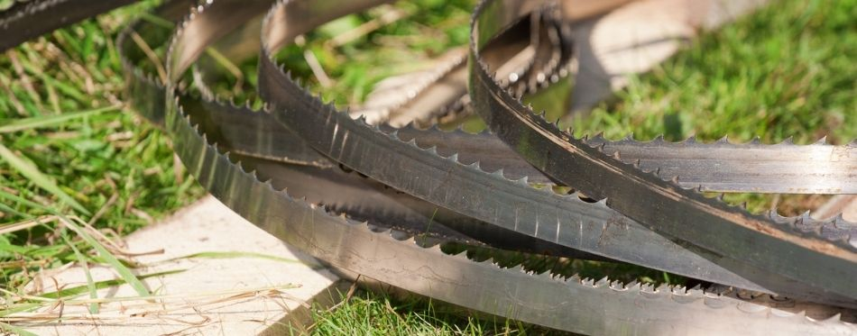 Bandsaw Blade On The Grass
