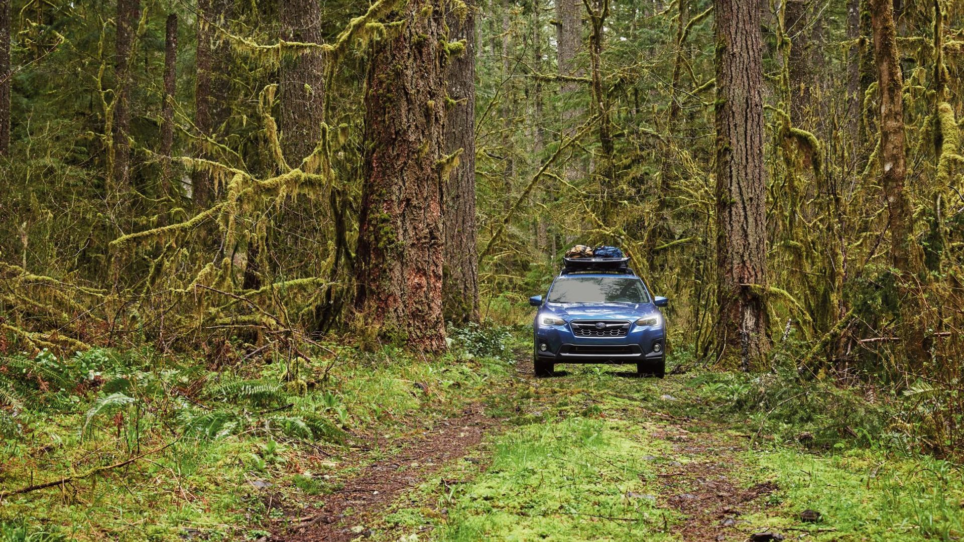 What Is Overlanding and How Do I Do It Right?