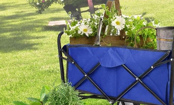 The Best Collapsible Wagons