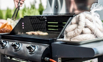 The Best Natural Gas Grills (Review and Buying Guide)