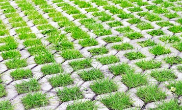 The Best Driveway Pavers: Increase Your Curb Appeal