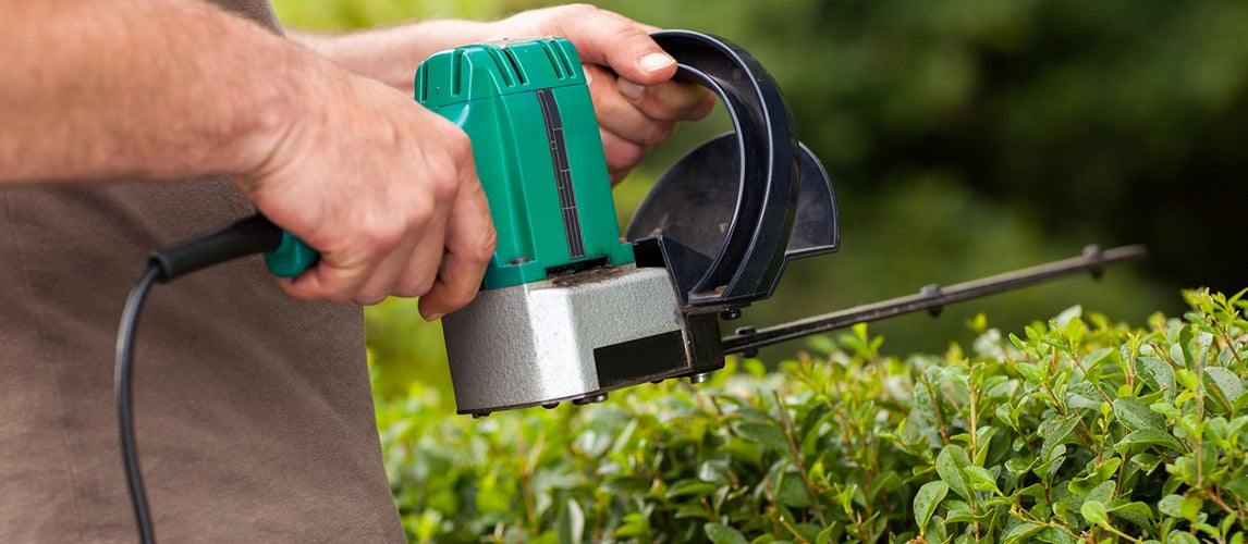 gardener using electric hedge trimmers
