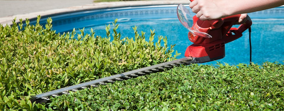 properly using the best Electric hedge trimmers