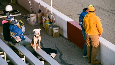 Who Doesn't Love a Good Track Dog?